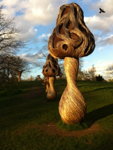 Willow sculptures at end of day, Mach 2014