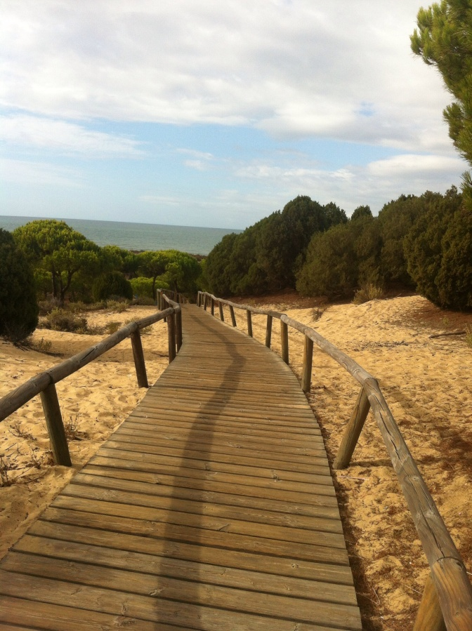 Summer sun and sand in September. Conservation of Spanish sand dune coastline