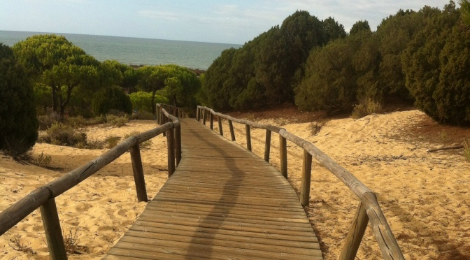 Summer sun and sand in September. Conservation of Spanish sand dune coastline