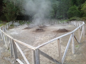 Bubbling hot geysers from volcanic activity. You can have a stew cooked inside one of those holes!