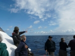 There be whales out there. Vittoria our marine biologist guide